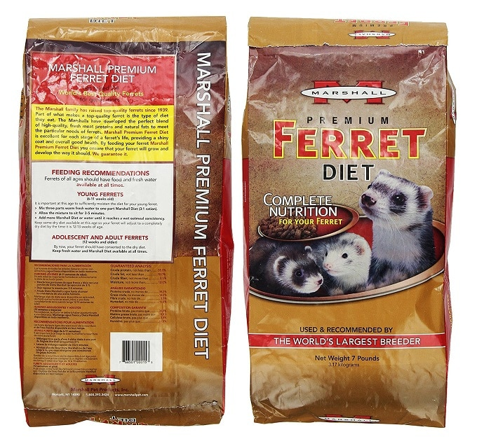 5 Best Foods For Ferrets (Must Read Reviews) For September 2019