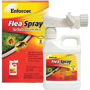 2018 top 5 tick killers for yards dr fox s advice reviews