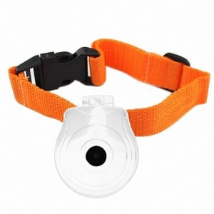 Top 11 Dog Gps Trackers | Reviews & Comparative Analysis For August 2019