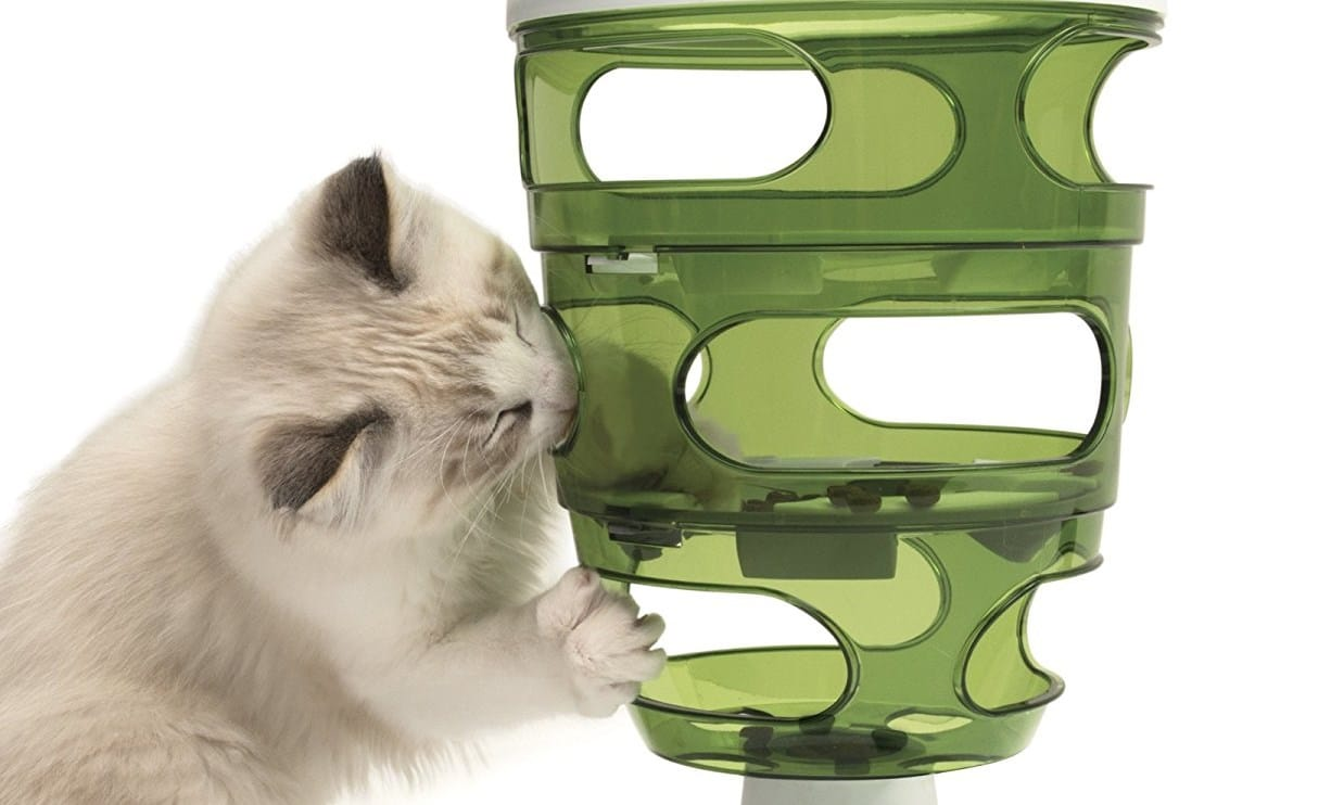 Slow Feed Cat Bowl Reviews