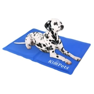 2019 Top 14 Dog Cooling Pads Dr Fox S Advice Reviews