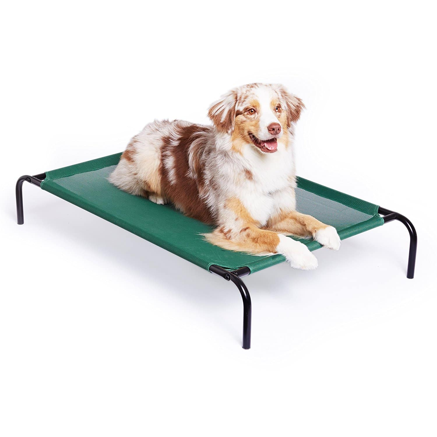 shop therapeutics theracool grey en dogs petcostore bed for mats cooling gel petco right product pet