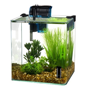 2019 top 5 fish tanks dr fox s advice reviews